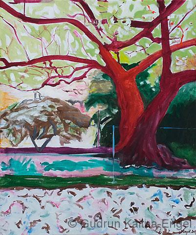 tree rot 1